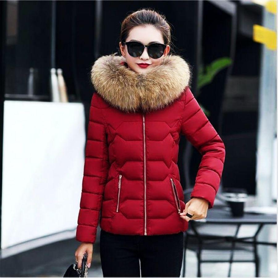 New Winter Jacket Women Faux Fur Hooded Parka Coats Female